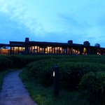 Evening view of Nyungwe Forest Lodge