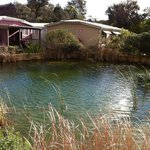Foto van Bay of Plenty Lodges