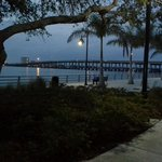 Marriott Courtyard Bradenton Sarasota / Riverfront Foto