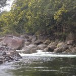 Foto de Mossman Gorge Bed and Breakfast