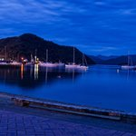 Picton at night.