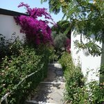 Photo de Aegean Garden