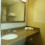 Chaparral Suites -- bath