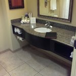 Holiday Inn Express & Suites Tampa USF-Busch Gardens resmi
