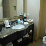 Hampton Inn & Suites Houston-Bush Intercontinental Airport resmi
