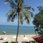 Bilde fra Royal Beach Boutique Resort & Spa