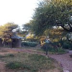 Marataba Safari Lodge의 사진
