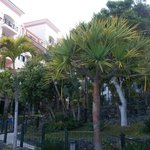 Photo de Madeira Regency Palace