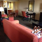 Φωτογραφία: Holiday Inn Express & Suites Tyler South