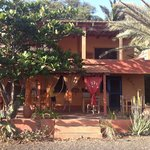 Foto de Tortuga Bed & Breakfast