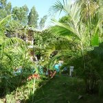 Foto Managua Hills Bed and Breakfast