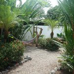 Photo of Cabinas Tropicales