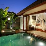 One Bedroom Private Pool and Jacuzzi