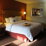 Hampton Inn Twin Falls Idahoの写真