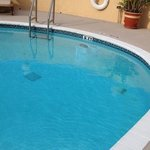 Bilde fra Comfort Inn & Suites Lantana - West Palm Beach South