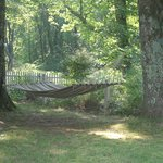 Relax in the garden on this comfy hammock.