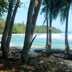 Photo de Playa Chiquita Lodge