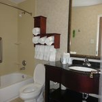 Φωτογραφία: Hampton Inn & Suites Birmingham/280 East-Eagle Point