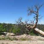Castlewood Canyon State Park...