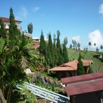 Foto van Bromo Cottages Hotel