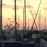 Sunset throught the masts