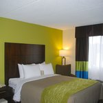 Our rooms have been completely renovated.