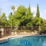 Enjoy California's year-round wonderful weather in our outdoor pool.