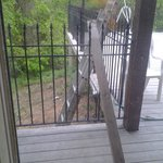 Ladder and 2x4 outside broken patio door