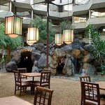 Hilton Chicago/Indian Lakes Resort Foto