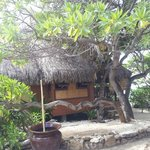 Foto Green Lodge