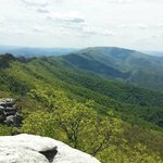 North Fork Mountain Inn의 사진