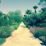 Foto Four Seasons Resort Marrakech