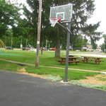 Basketball Hoop / Picnic Area