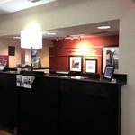 Φωτογραφία: Hampton Inn & Suites Nashville / Airport