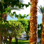 Bilde fra Malama Beach Holiday Village
