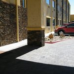Photo de La Quinta Inn & Suites Tucson - Reid Park