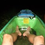 Glass bottomed kayaks outfitted with LED lights