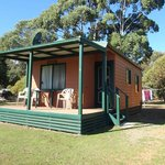 our cabin, hakea