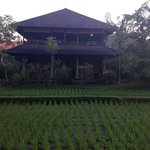 Ananda Cottages resmi