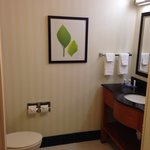 Foto de Fairfield Inn & Suites Sevierville Kodak