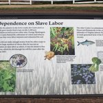 Dependence on Slave Labor sign, Arlington House, April 2014