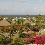 Photo of Chogogo Resort