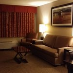 Φωτογραφία: Holiday Inn Hotel & Suites Marlboro