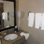 Holiday Inn Hotel & Suites Vancouver Downtown照片