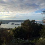 Part of the magic view otago harbour . Larnach lodge.
