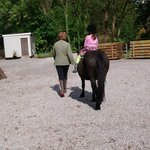 Blessingbourne Horse Riding
