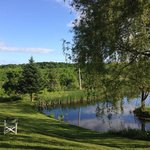 صورة فوتوغرافية لـ ‪The Willow Tree Inn Bed & Breakfast‬