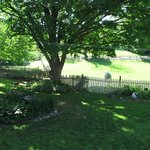 Bilde fra MeadowLark Farm Bed and Breakfast