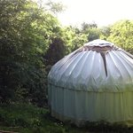 mole end yurt