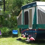 Foto di Wekiva Falls RV Resort